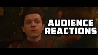 "Avengers Infinity War Full Scene ""The Decimation"" {SPOILERS} : Audience Reactions 