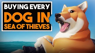 BUYING EVERY DOG IN SEA OF THIEVES