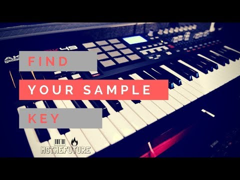 Find The Key Of Your Samples | LoFi Casso Preview (Free Lo Fi Kit Download)