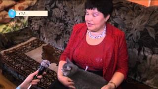 Чудо-сваха из Башкирии бесплатно переженила более 50 пар
