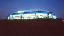 Schalke 04 - Samstag auf Schalke