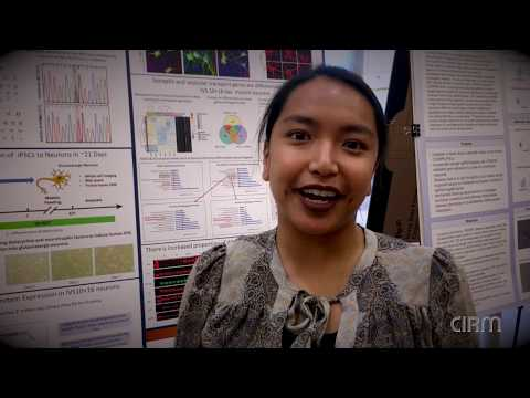 Ccsf Spring 2020 Schedule Biotechnology at CCSF   Stem Cell Internship