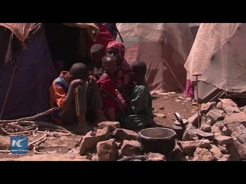 Crisis in the Horn of Africa: Somalia's Famine