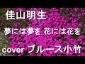 夢には夢を 花には花を/佳山明生 by ブルース小竹