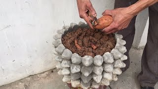 Amazing-Wonderful Technique For Making Flower Pots From An Egg Tray
