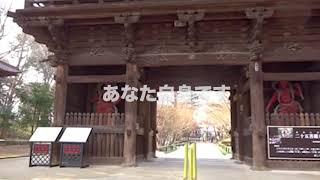 小林克也&ザ・ナンバーワン・バンド - ナムアミダブツ IN 九品仏