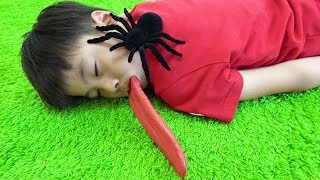 spider egg spider creeping up pretend play!Pretend Play Ko-kun nemi-chan KIDSLINE
