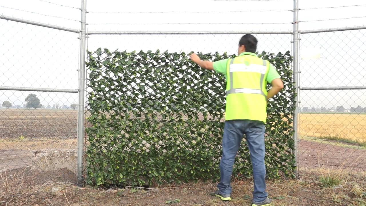 Beevergreen instalaci n de enredadera artificial panel for Plantas trepadoras para muros