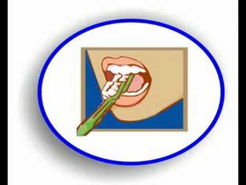 lavarse los dientes - YouTube