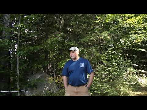 New Hampshire Fish And Game Department Bear Biologist- Take 3