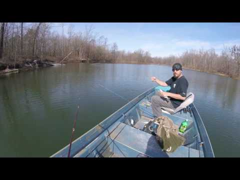 Leaf Lake, Drummonds Tn. 33 bass total my best fishing day