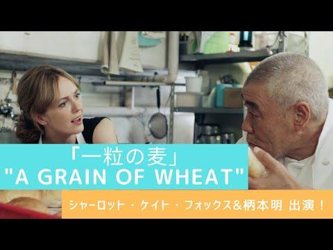 ショートフィルム『一粒の麦』(本編)  / Short Film