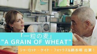 環境未来都市・横浜の魅力を発信するショートフィルムプロジェクト~(En...