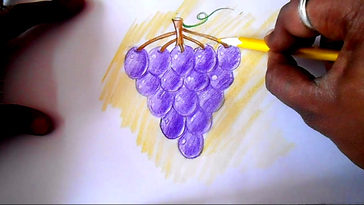 How to draw Grapes easy - YouTube for drawing grapes easy  181obs
