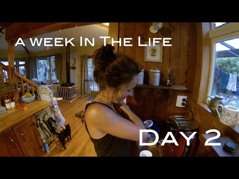 bushman living in new zealand with Josh James - a day in the life VLog