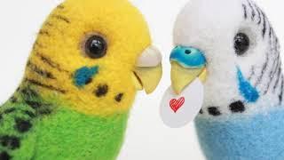 Часть: 3 // Размножение волнистых попугаев в домашних условиях // уход за птенцами