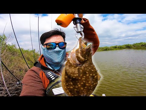 Catch BIG FISH With A Bugg Fishing For Saltwater Giants