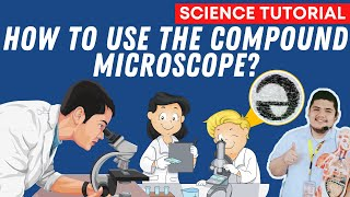USING THE COMPOUND MICROSCOPE GRADE 7 SCIENCE