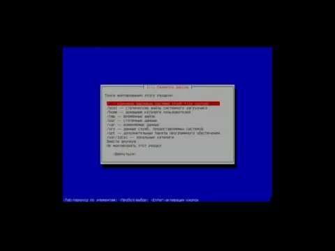 Разметка жестких дисков при установке Debian на программный дисковый массив RAID1