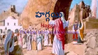 Haggai (హగ్గయి)_ The Holy Bible audio in Telugu.wmv