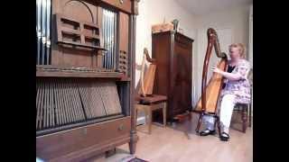 Aoyama 34 string harp for sale at Harpshop Regina Ederveen