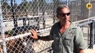 Charlie Sammut at the Monterey Zoo (formerly Wild Things) is looking to improve his wild animal park