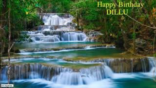 Dillu   Nature