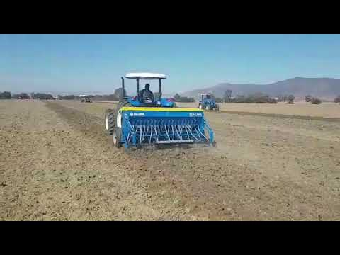 SEED DRILL - semoir - ENERGY by ACMA ITALY