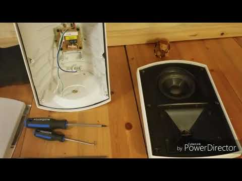 Klipsch AW500 Speaker Disassembly And Review