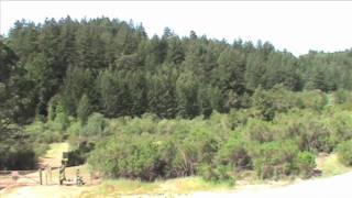 Long Ridge Preserve - Midpeninsula Regional Open Space District