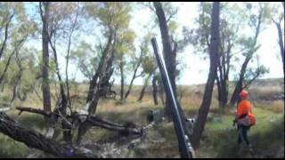 Kansas Quail Hunt Part 1 Oct 2011