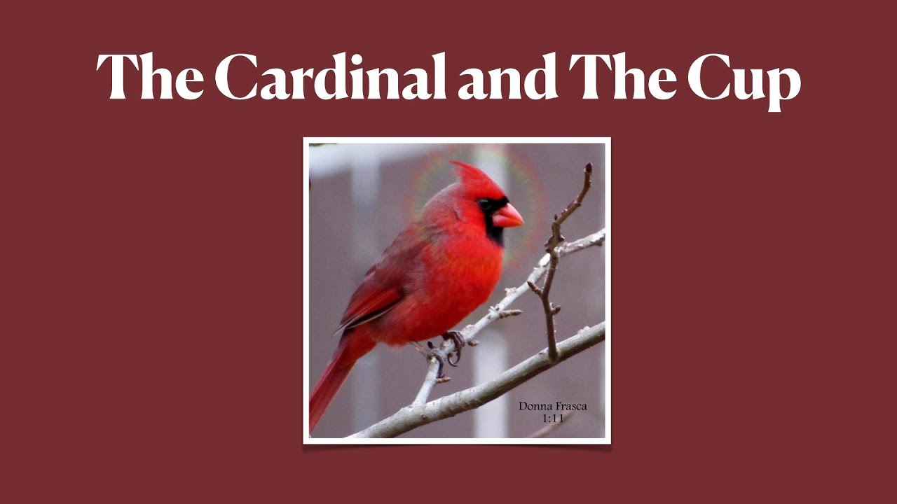 The Cardinal and The Tea Cup