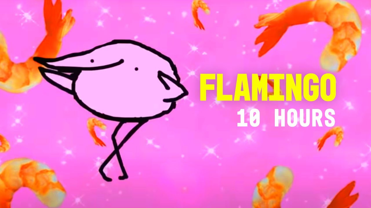 Flamingo 10 Hours