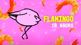 Video Flamingo 10 Hours download MP3, MP4, WEBM, AVI, FLV April 2018