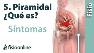Repeat youtube video ¿Qué es el síndrome del músculo piramidal y cuáles son sus síntomas y causas?