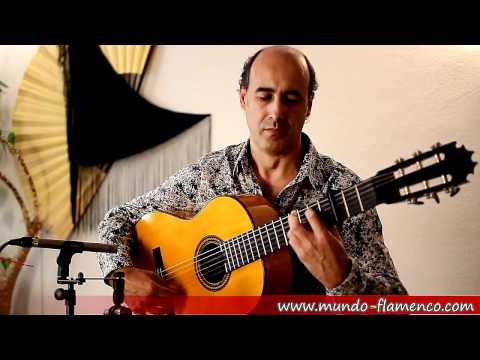 Flamenco Guitar Bulerías 4