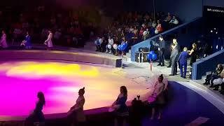 Владивостокский цирк открыт!