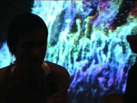 Arts/Sciences#11: Evelina Domnitch & Dmitry Gelfand