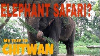 Download Video CHITWAN NEPAL | | A SAD REALITY OF ELEPHANTS || Sauraha chitwan national park MP3 3GP MP4