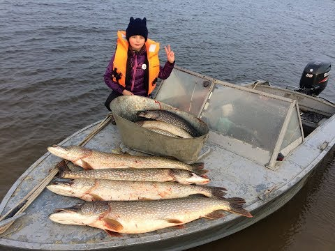 Рыбалка с Соней на огромных щук. Рыбалка троллингом. Fishing trolling. Big pike.