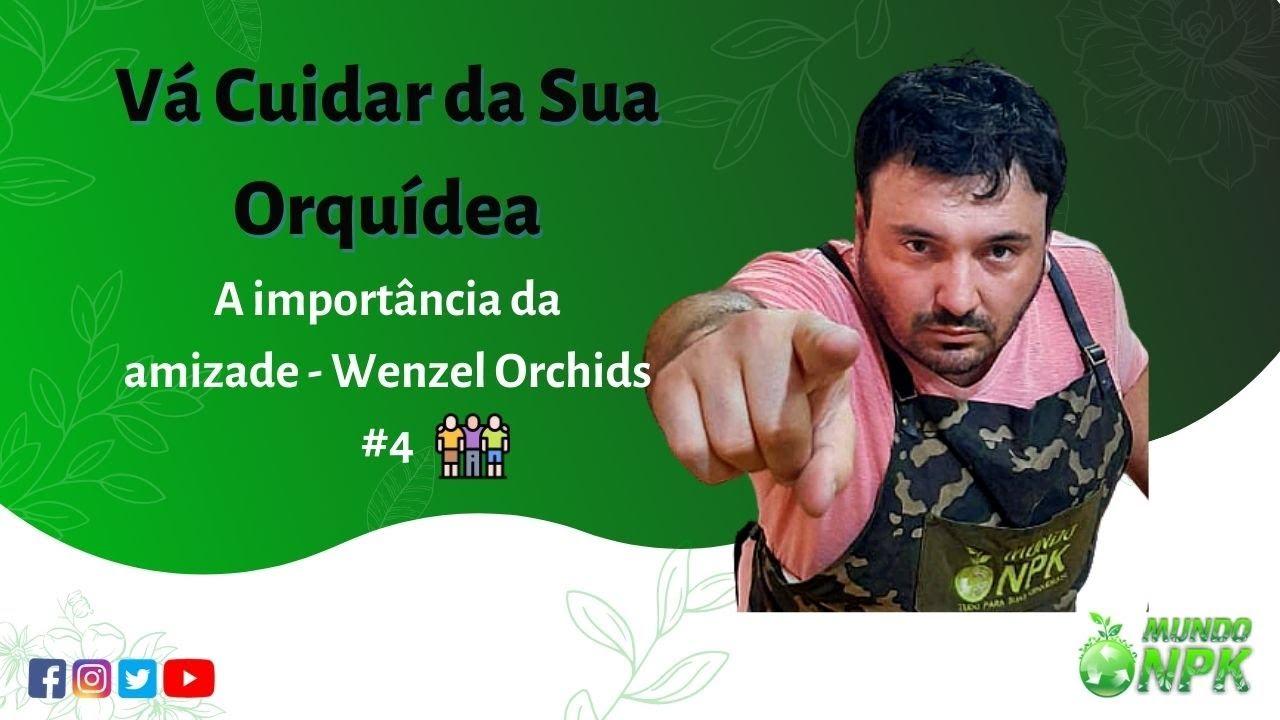 Vai Cuidar da Sua Orquídea #4 - Wenzel Orchids - Orquidário Rio Clarense