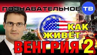 Как живёт Венгрия 2 (Познавательное ТВ, Мартон Дёндьёши)