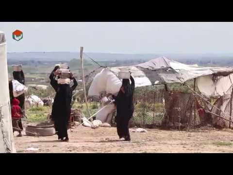 الاستجابة الغذائية الطارئة للنازحين داخلياً في شمال حلب