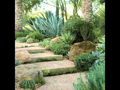 Cactus Garden Ideas give your cacti a good home Easy Diy Cactus Garden Design Decorating Ideas Youtube