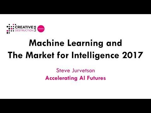 Steve Jurvetson: Accelerating AI Futures