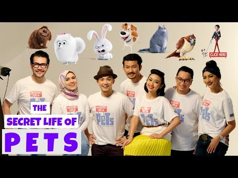 Dubbing THE SECRET LIFE OF PETS versi Bahasa Indonesia (2) | Ichsan Akbar