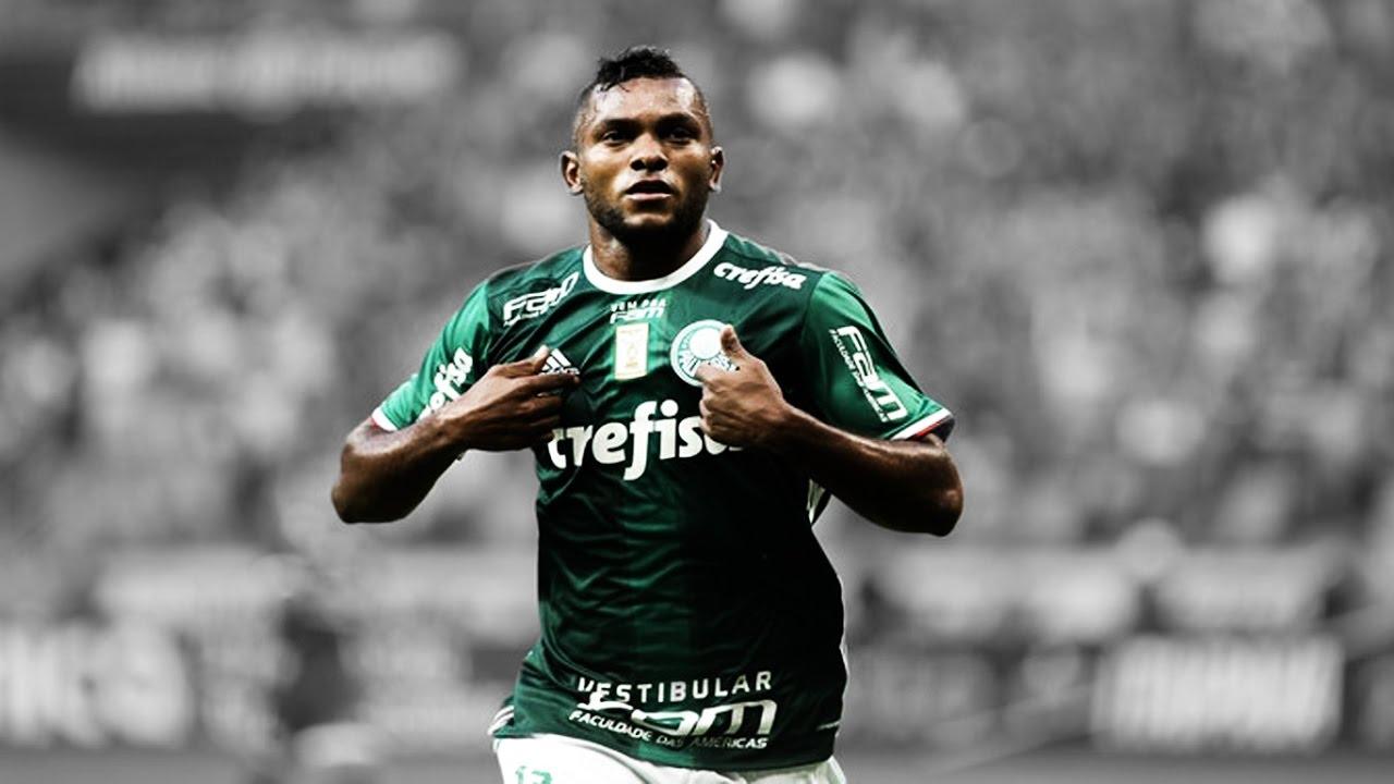 Miguel Borja ○ Palmeiras ○ Goles ○ 2017