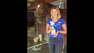 RÉPULSIF TITAN - TAONS & MOUCHES MICHEL VAILLANT pour chevaux