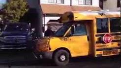 Bus tribute to Behira
