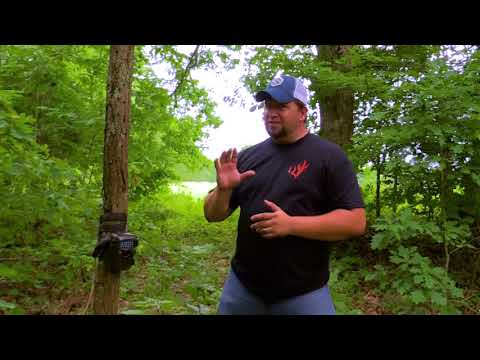 WHITETAIL UNIVERSITY: EPISODE 2: TRAIL CAMERAS